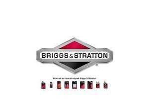 Come fare il primo avviamento del motore Briggs & Stratton 450E series