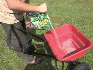 Come concimare il tappeto erboso
