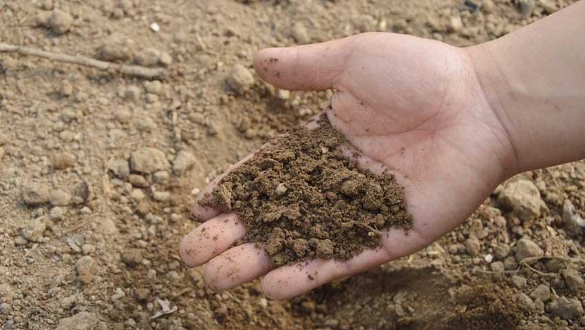 Fertilizzanti, presentato il Manuale sul campionamento