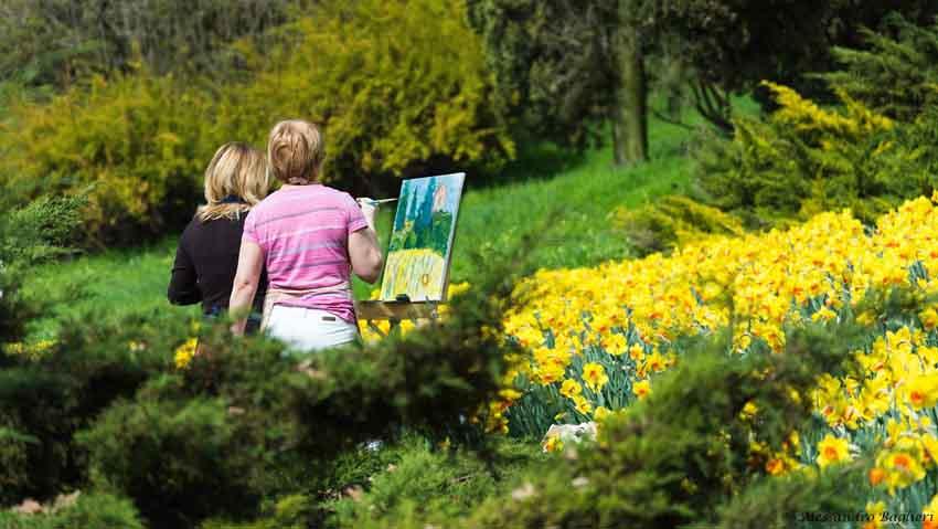 Tra un mese la fioritura: il parco di Sigurtà si regala alle donne