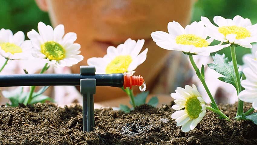 Corsi per fare un impianto di irrigazione