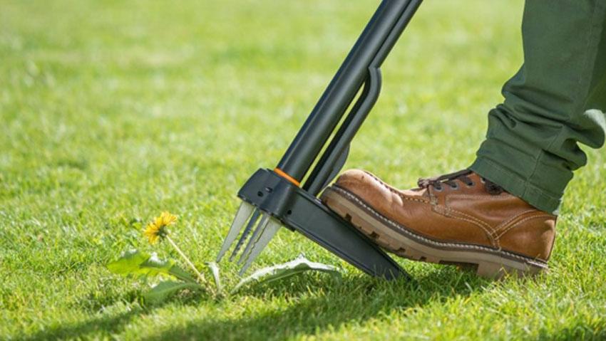 Nuovi estirpatori per un giardino senza erbacce e senza pesticidi