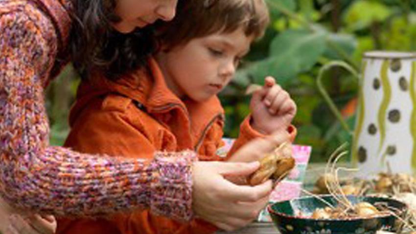 Piantare bulbi fa bene, soprattutto con i bambini
