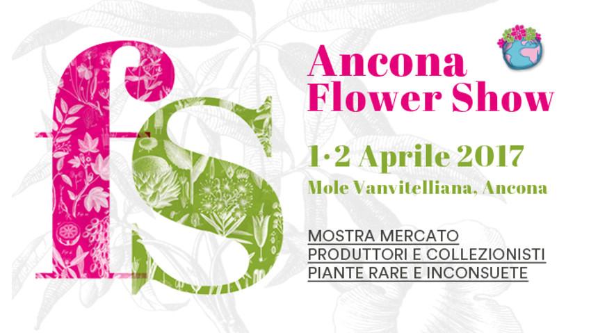 Ancona Flower Show, le novità del 2017