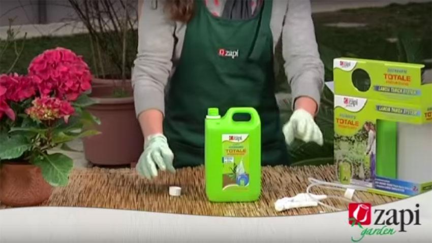 Lotta alle erbe infestanti: le soluzioni di Zapi
