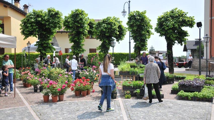 Giardinidea, un evento per scoprire il mondo del verde