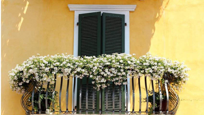 Come avere un balcone fiorito, corso gratuito