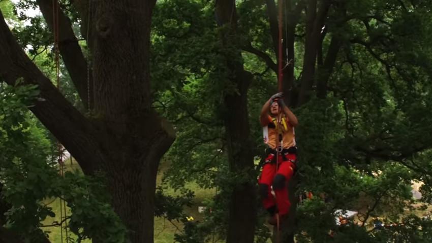 I campionati europei di tree climbing