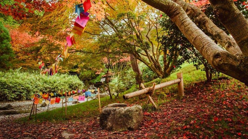 Foliage: tutti gli appuntamenti nei Parchi più belli d'Italia