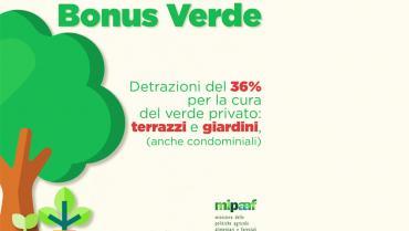 Arriva il Bonus Verde: detrazioni al 36%