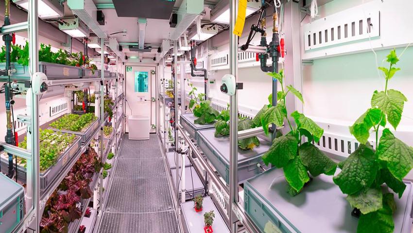 L'orto nello spazio e le piante su Marte