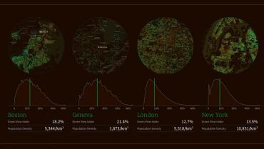 Quanto è verde la città? Lo dice Treepedia