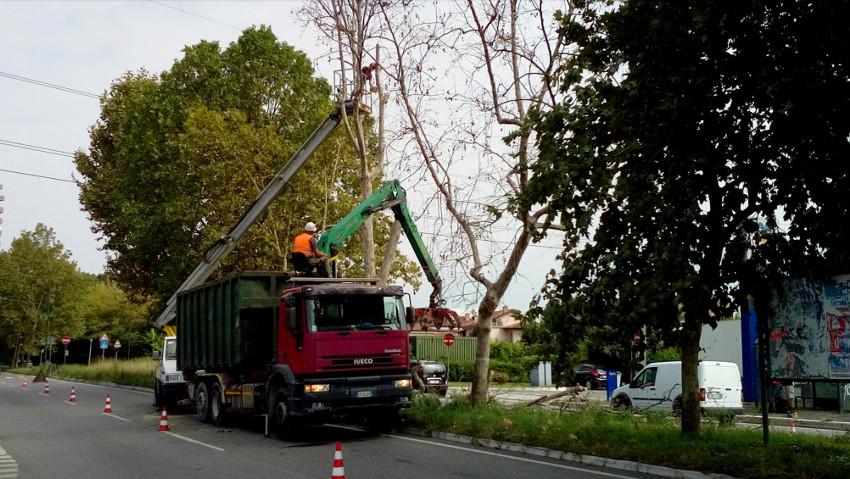 Corso di sicurezza nelle opere a verde