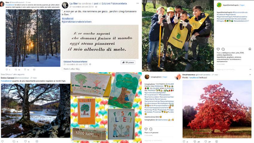La campagna social regala 40 nuove piante