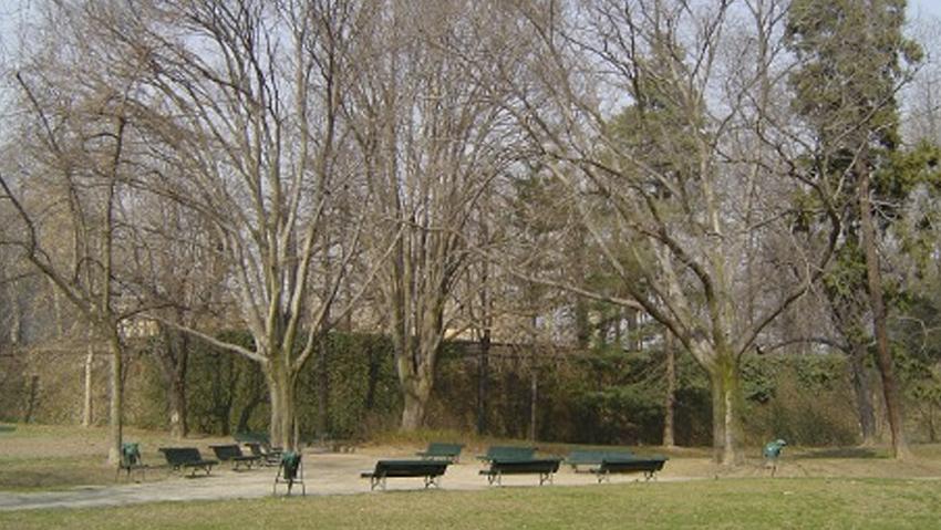 Manutenzione: Torino lancia l'Agenda del Verde