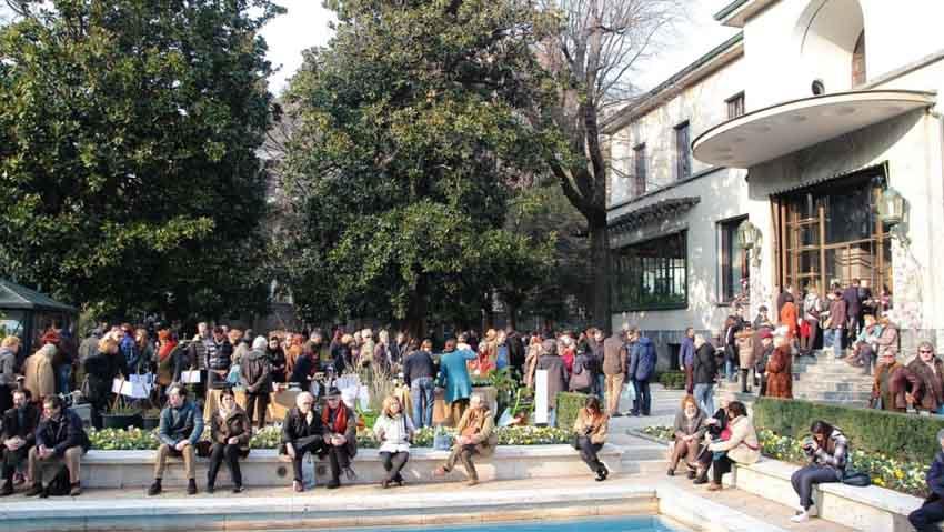 Agrumi, torna la rassegna a Milano