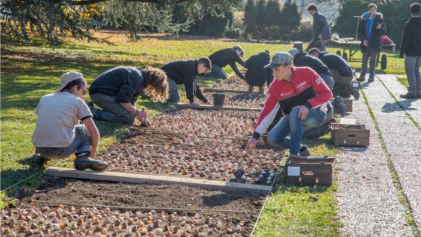 Giardinaggio resiliente: corso gratuito per disoccupati