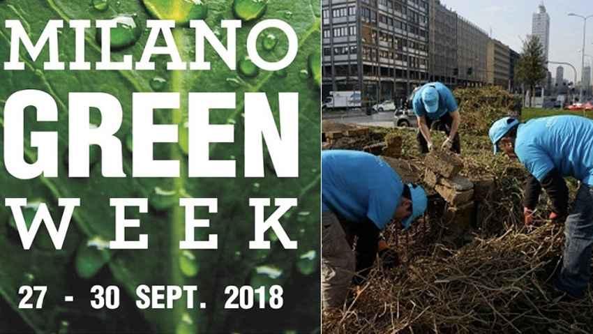 A Milano piantati 15mila alberi in cinque mesi