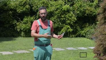 Come scegliere le forbici da potatura