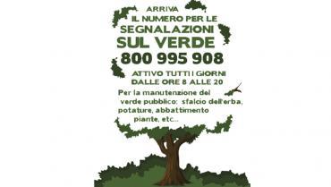Un numero verde per la manutenzione del verde