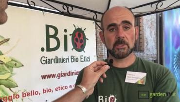 Come usare gli insetti utili in giardino