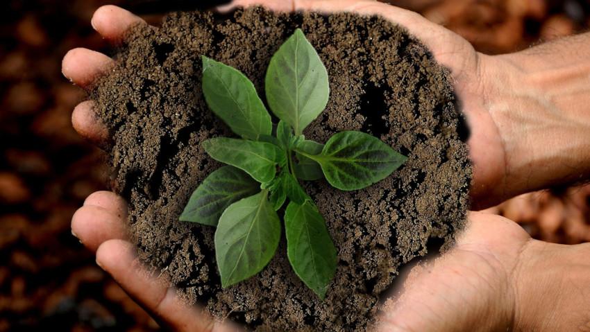 Corsi di permacultura e fertilità bio