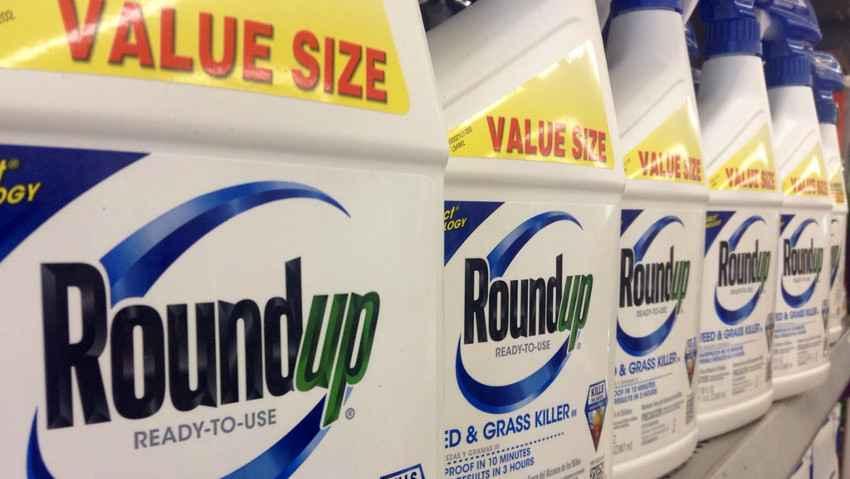 Monsanto, il risarcimento per il glifosate passa da 289 a 78 milioni