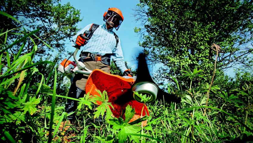 Lavoro: in aumento le imprese di giardinaggio