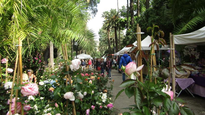 Mostra mercato di piante all'Orto Botanico di Napoli