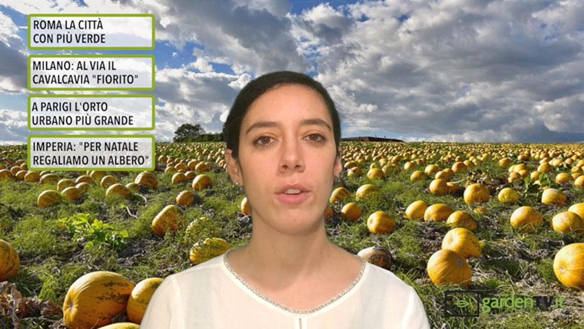 Cronaca Verde: notizie dal mondo del giardinaggio