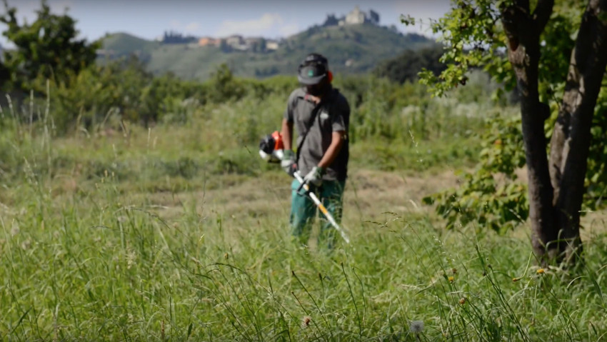 Diventa giardiniere professionista