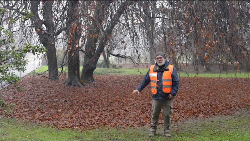 La gestione sostenibile delle foglie
