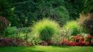 <a href='http://radiogarden.it/la-giusta-distanza-tra-le-piante/'><u>ASCOLTA IL PODCAST</u></a>  <a href='https://www.gardentv.it/come-calcolare-giusta-distanza-piante.html'>Piante: la giusta distanza</a>