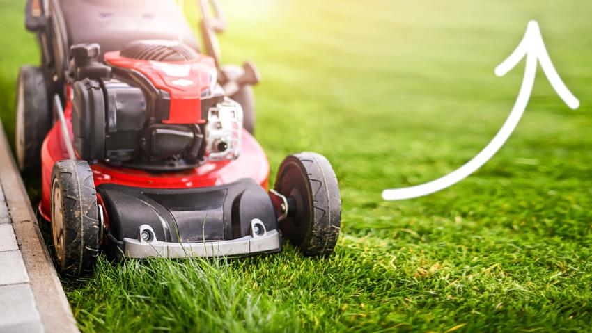 Macchine per il giardinaggio: mercato in ripresa. Cosa si vende e cosa no