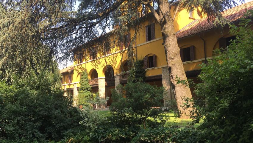 Allenamento di tree climbing: corso a Monza