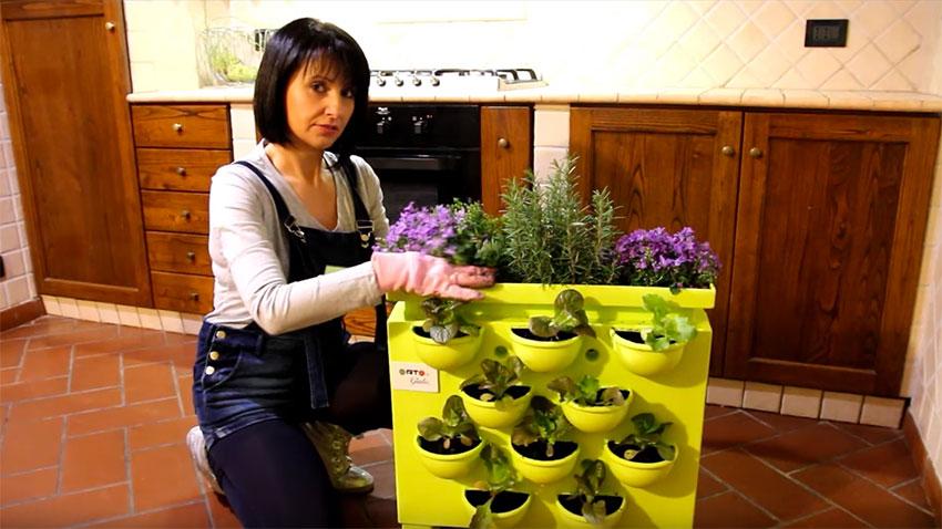 Come creare un orto verticale in cucina