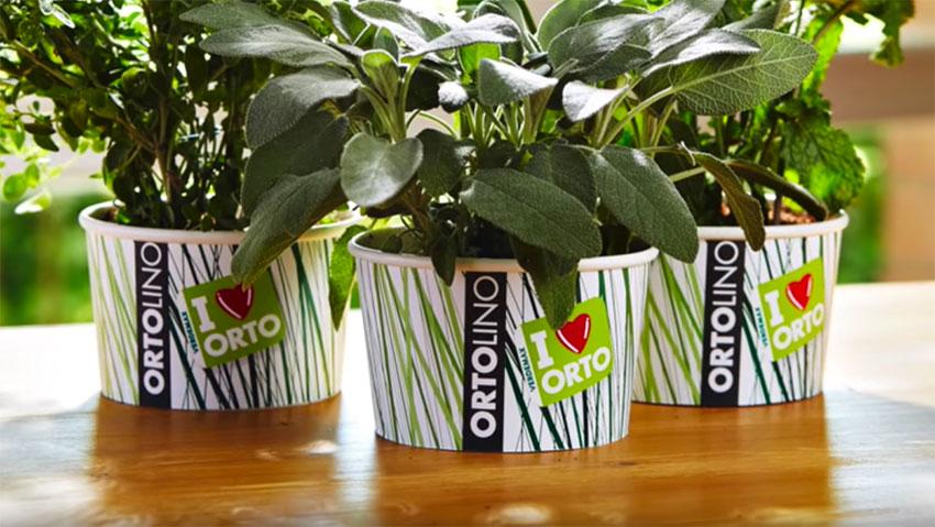 Tutorial: l'orto facile in casa con Ortolino