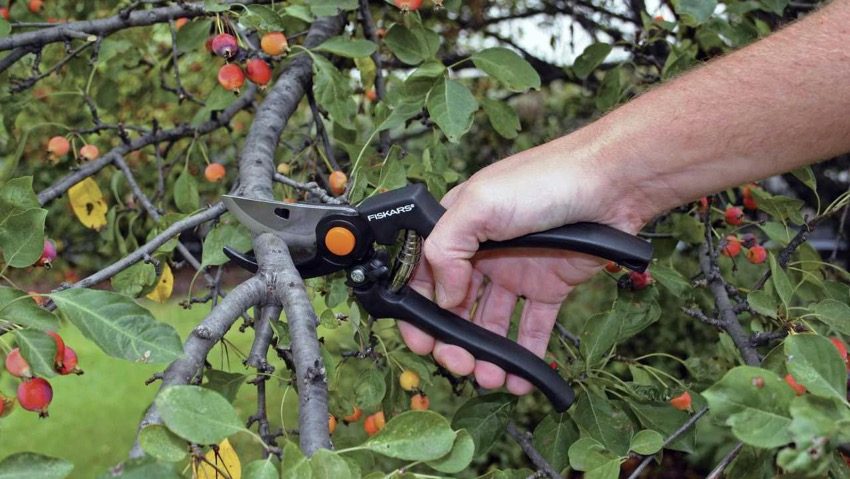 Fiskars: nuove forbici Garden Pro