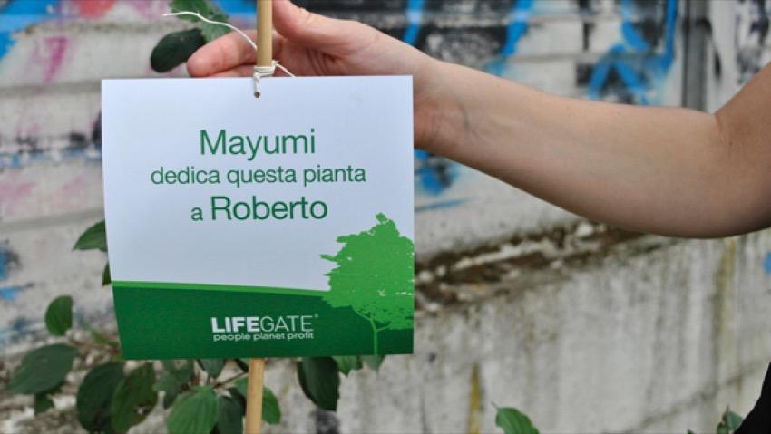 LifeGate, regalare un pezzo di foresta