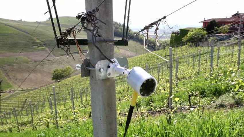 Ixem, la webcam per sorvegliare le piante