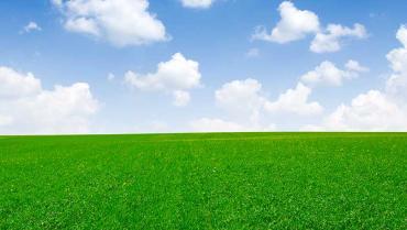 Cons. Agrario del Piemonte Orientale