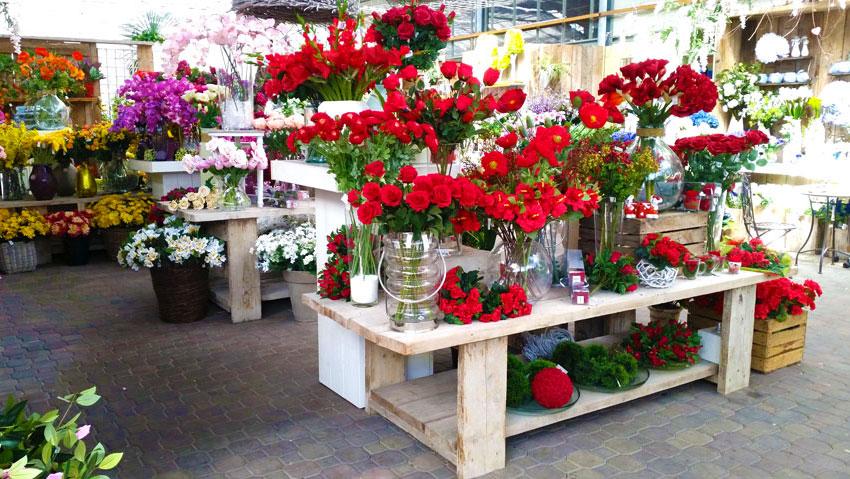 Floricoltura C.na Comella