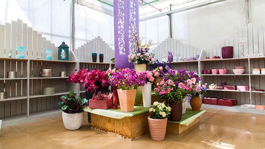 Floricoltura Ognibeni
