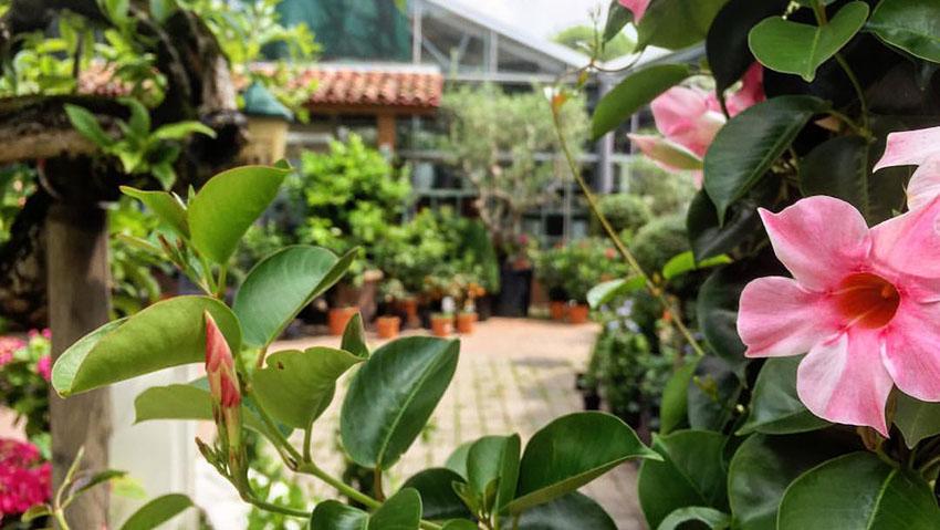 Galbiati Garden