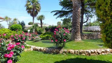 Zin Garden