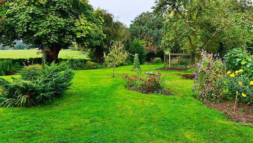 Arte nel giardinaggio