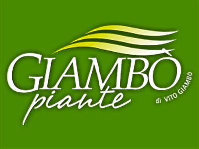 Giambo piante di Vito Giambò