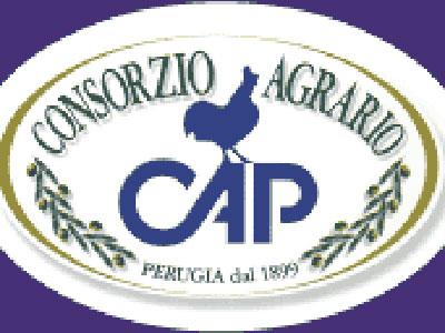 Cons. Agrario di Perugia