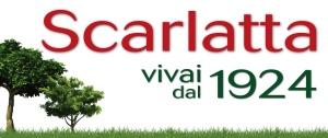 Centro Piante Scarlatta