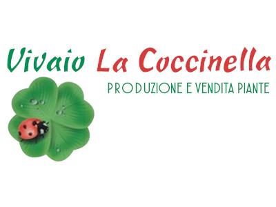 Vivaio la Coccinella